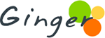 AIMETC Placement Record Ginger Logo